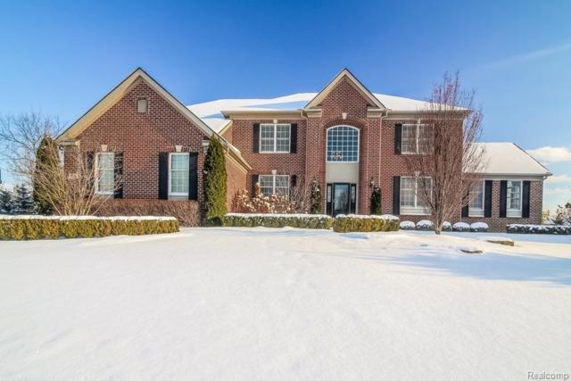 50115 Teton Ridge Road, Northville Twp, MI 48167 (#543254313) :: RE/MAX Classic