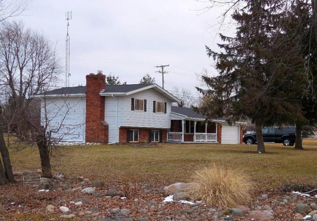 5311 Sandusky Road, Peck Vlg, MI 48466 (#218012159) :: Duneske Real Estate Advisors