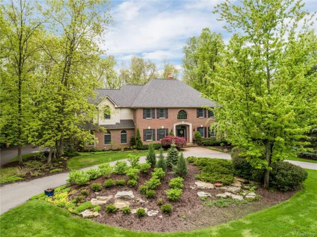 8972 Morning Mist Drive, Independence Twp, MI 48348 (#218013526) :: The Buckley Jolley Real Estate Team