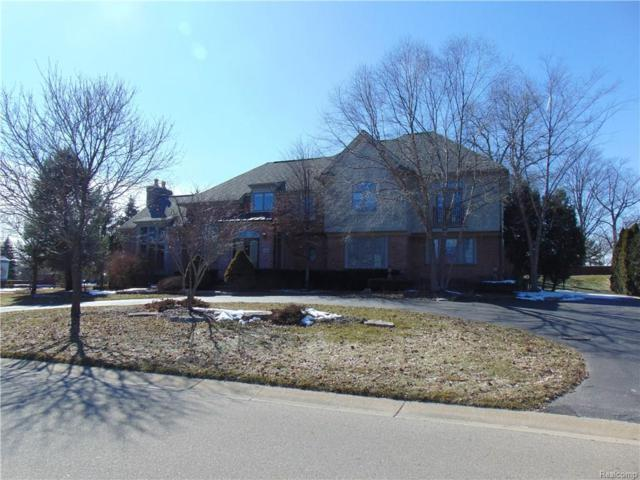18401 Fox Hollow Court, Northville Twp, MI 48168 (#218021160) :: Duneske Real Estate Advisors