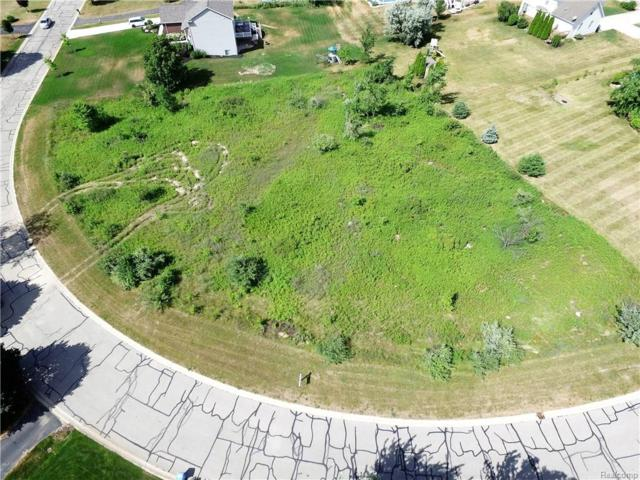 7691 Summer Breeze Trail, Oceola Twp, MI 48843 (#218021713) :: The Buckley Jolley Real Estate Team