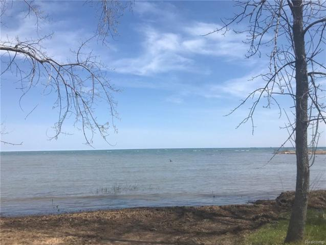TBD Shore Front Lane, Gore Twp, MI 48468 (#218024273) :: The Buckley Jolley Real Estate Team