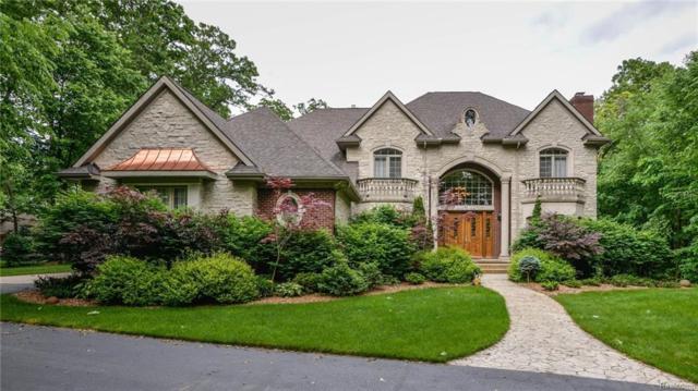 3164 Canyon Oaks Trail, Milford Twp, MI 48380 (#218024670) :: Duneske Real Estate Advisors
