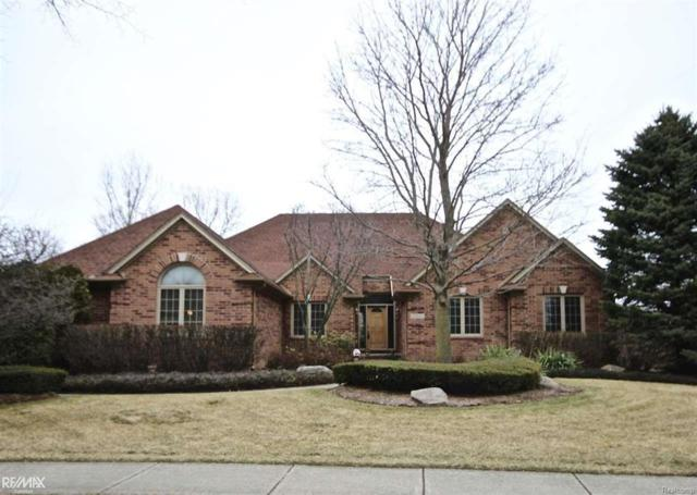 13043 Towering Oaks Dr, Shelby Twp, MI 48315 (MLS #58031343617) :: The Toth Team