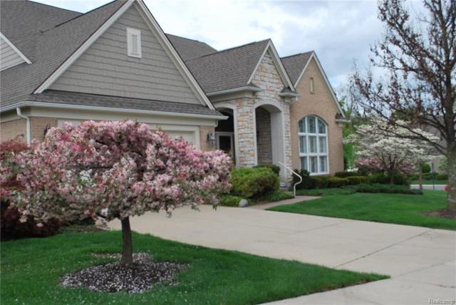 15821 Winding Creek Court, Northville, MI 48168 (#218027854) :: Duneske Real Estate Advisors