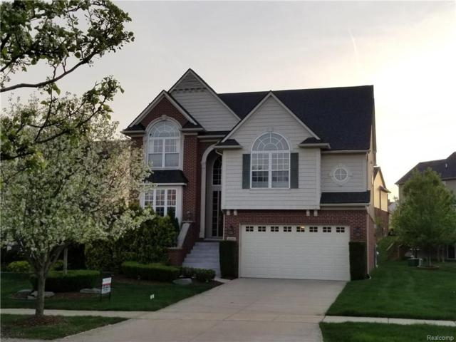 16355 Westminister Drive, Northville Twp, MI 48168 (#218028241) :: RE/MAX Classic