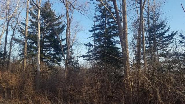 lot 32 Cedar Bend Drive, Commerce Twp, MI 48382 (#218028832) :: The Buckley Jolley Real Estate Team