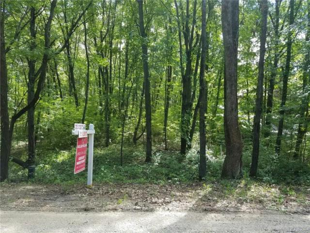 Parcel 12-S Hidden Valley, Marion Twp, MI 48843 (MLS #218030841) :: The Toth Team