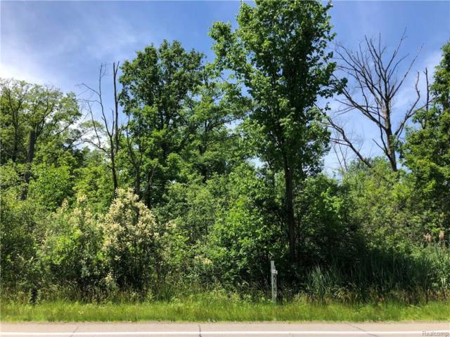 Vacant Meridian (Parcel 1), Grosse Ile Twp, MI 48138 (#218031338) :: Keller Williams West Bloomfield