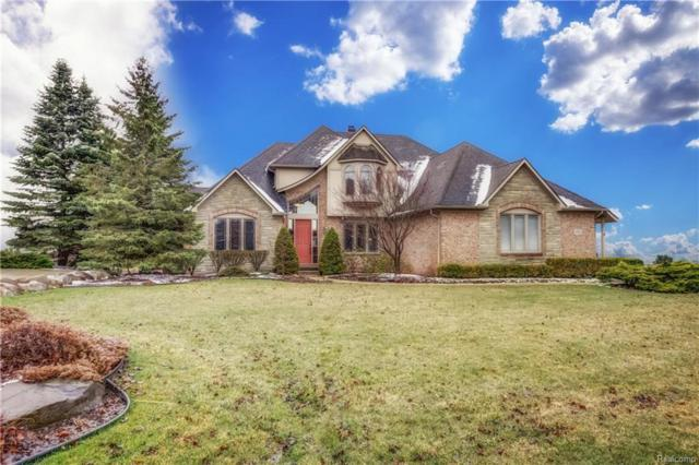 10800 Lighthouse Point, Green Oak Twp, MI 48178 (#218032093) :: The Mulvihill Group