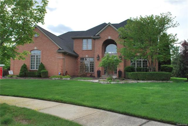 48210 Binghampton Court, Northville Twp, MI 48168 (#218032333) :: RE/MAX Classic