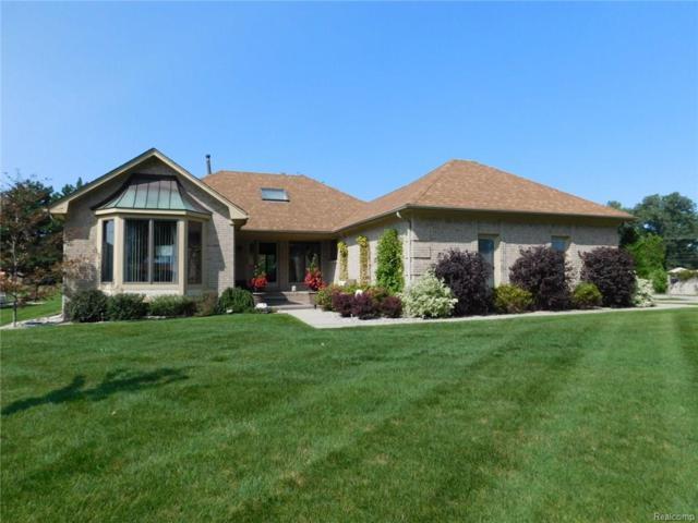 49937 Miller Court, Chesterfield Twp, MI 48047 (#218033092) :: Duneske Real Estate Advisors