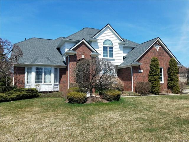 14289 Patterson Drive, Shelby Twp, MI 48315 (#218034228) :: Duneske Real Estate Advisors