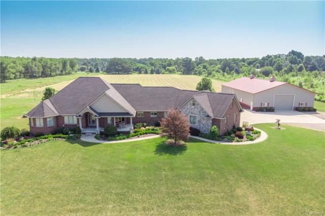 5933 Scotch Settlement Road, Almont Twp, MI 48003 (#218035091) :: The Buckley Jolley Real Estate Team