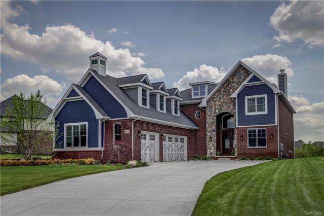 10417 Stoney Point Drive, Green Oak Twp, MI 48178 (#218042966) :: Duneske Real Estate Advisors