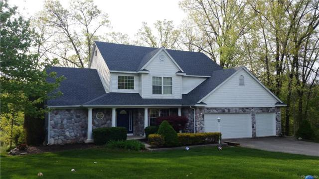 3128 Hunter Way Way, Putnam Twp, MI 48169 (#218043315) :: The Mulvihill Group