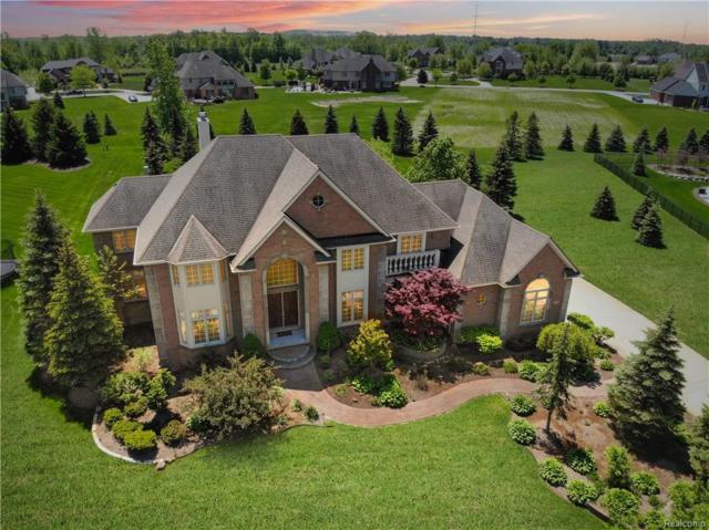 50985 Sunday Drive, Novi, MI 48167 (#218045606) :: Duneske Real Estate Advisors
