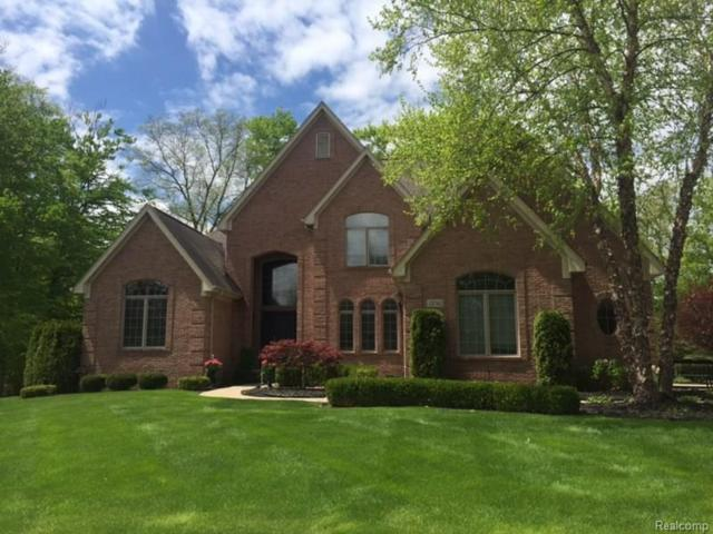 23742 Point O Woods Court, Lyon Twp, MI 48178 (#218046139) :: The Buckley Jolley Real Estate Team