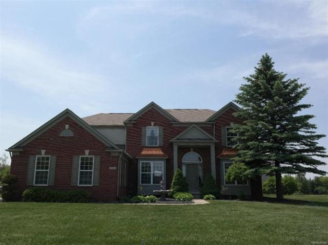 8362 Oxford, Grand Blanc Twp, MI 48439 (#50100002325) :: The Mulvihill Group