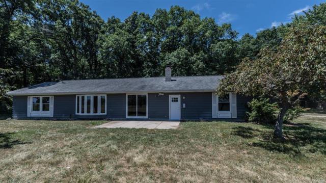 9237 Wamplers Lake Road, Columbia Twp, MI 49230 (#543256807) :: The Buckley Jolley Real Estate Team