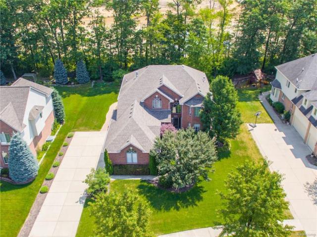 63764 Georgetowne E, Washington Twp, MI 48095 (#218052871) :: The Buckley Jolley Real Estate Team