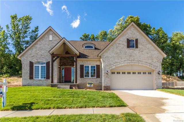 561 Napa Valley Drive, Milford Twp, MI 48381 (#218053465) :: The Mulvihill Group