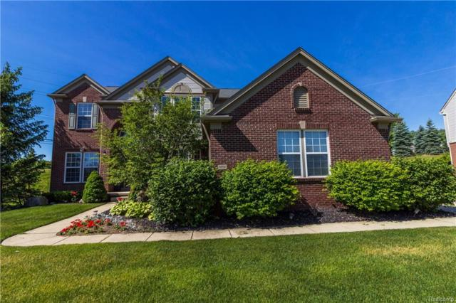 4954 Catalina Drive, Orion Twp, MI 48359 (MLS #218053500) :: The Toth Team