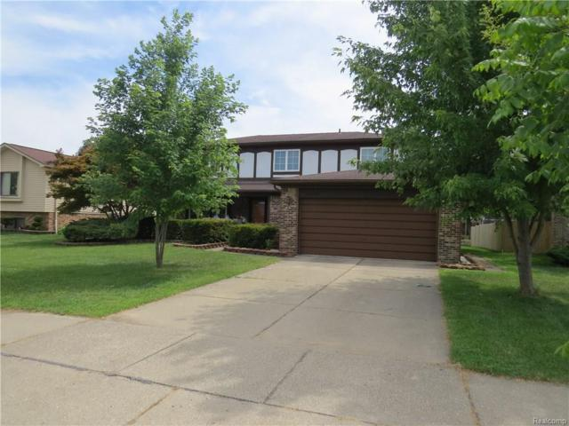 14408 Lakeshore Drive, Sterling Heights, MI 48313 (#218057431) :: RE/MAX Classic