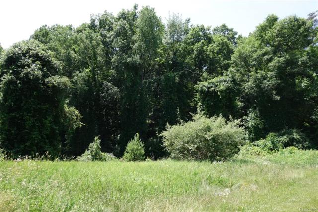 Lot 133 Pine Meadow, Independence Twp, MI 48348 (#218058330) :: The Buckley Jolley Real Estate Team