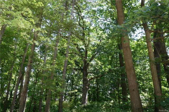 Lot 19 Devins Ridge, Independence Twp, MI 48348 (#218058369) :: RE/MAX Vision