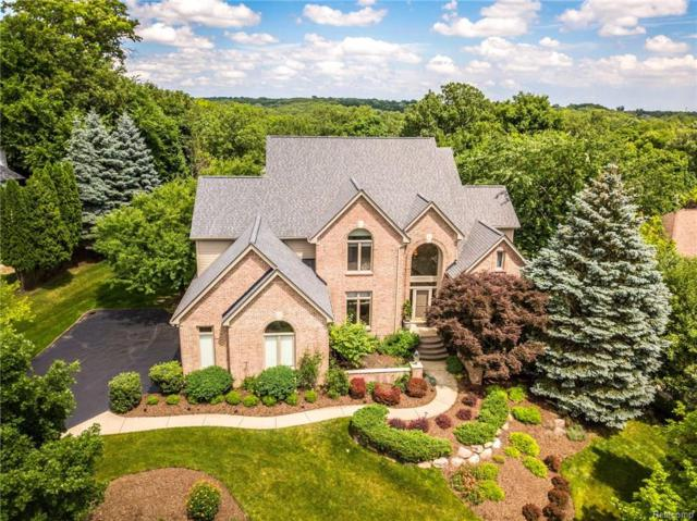 1650 Scenic Hollow Drive, Rochester Hills, MI 48306 (#218060957) :: The Buckley Jolley Real Estate Team
