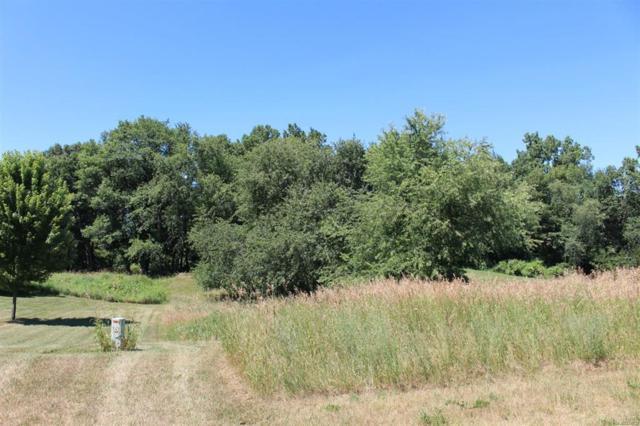10230 Tims Lake Boulevard, Grass Lake Twp, MI 49240 (#543258404) :: The Buckley Jolley Real Estate Team