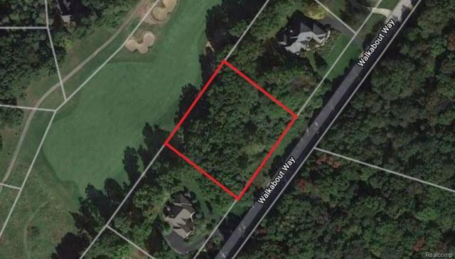 8176 Walkabout Way, Putnam Twp, MI 48169 (MLS #218064767) :: The Toth Team