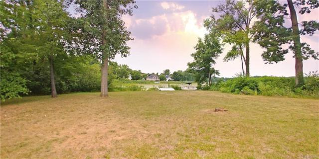 16126 Scenic View Drive, Fenton Twp, MI 48451 (#218065335) :: The Buckley Jolley Real Estate Team