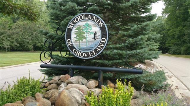 LOT 20 Oak Hollow Drive, Groveland Twp, MI 48442 (MLS #218068705) :: The Toth Team