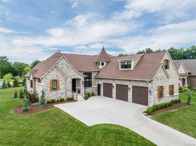 9761 Nature Valley Drive, Brighton Twp, MI 48114 (#218070476) :: Duneske Real Estate Advisors