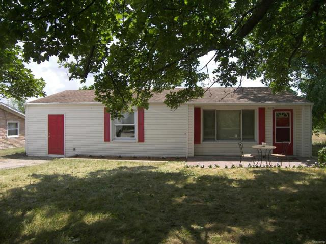3885 Ann Arbor Saline Road, Lodi Twp, MI 48103 (#543258910) :: The Buckley Jolley Real Estate Team