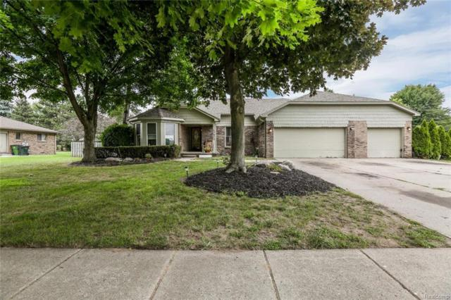 7673 Jeanette, Shelby Twp, MI 48317 (#218072088) :: RE/MAX Classic