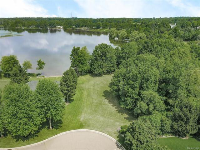 100 Lakeshore Drive, Brandon Twp, MI 48348 (#218073659) :: RE/MAX Classic