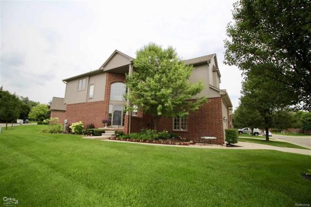 4257 Summer Place, Shelby Twp, MI 48316 (#58031355970) :: Duneske Real Estate Advisors