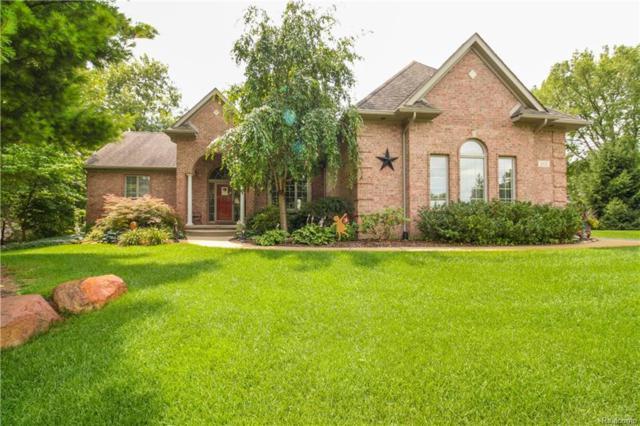 161 Abby Brook Lane, Marion Twp, MI 48843 (#218075389) :: Duneske Real Estate Advisors