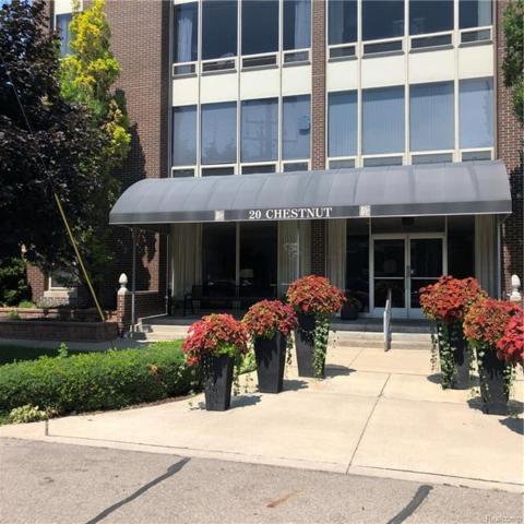 20 Chestnut Street #202, Wyandotte, MI 48192 (#218077421) :: Duneske Real Estate Advisors