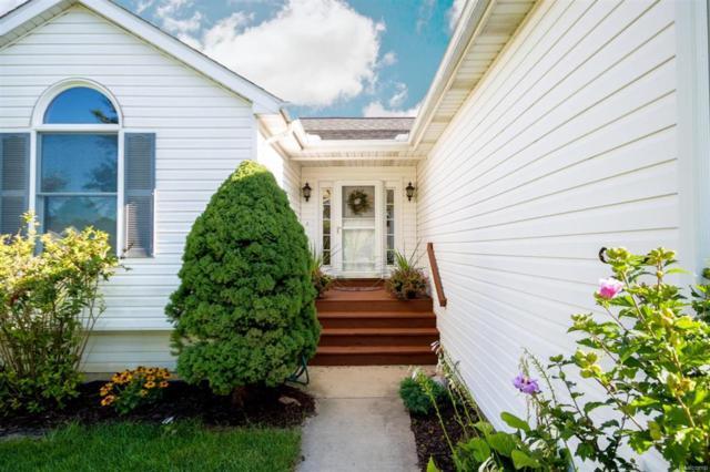 428 Umberland Drive, Howell City, MI 48843 (#543259646) :: Duneske Real Estate Advisors