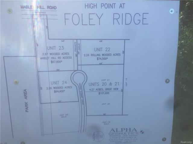 9412 Grand Summit, Tyrone Twp, MI 48430 (#50100003733) :: The Buckley Jolley Real Estate Team