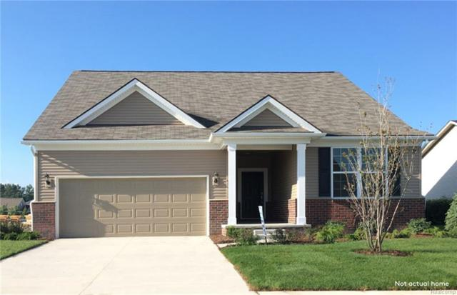1142 Lark, Orion Twp, MI 48360 (MLS #218081532) :: The Toth Team