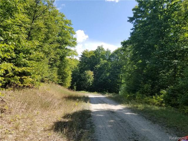 0 Timber Wood Trail, Springvale Twp, MI 49770 (#218082095) :: RE/MAX Classic