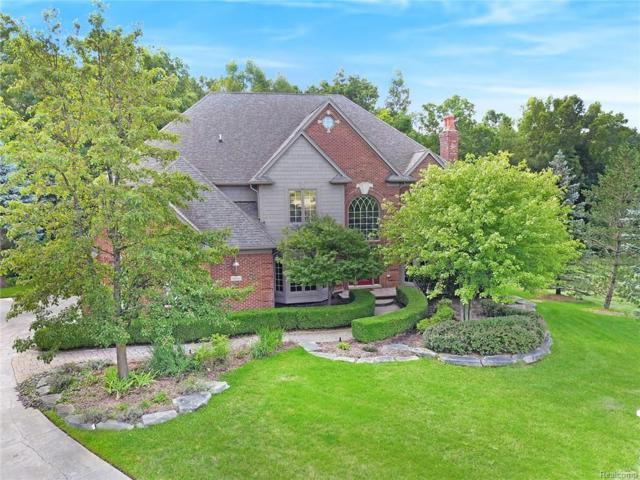 8834 Hunters Creek Court, Independence Twp, MI 48348 (MLS #218085112) :: The Toth Team