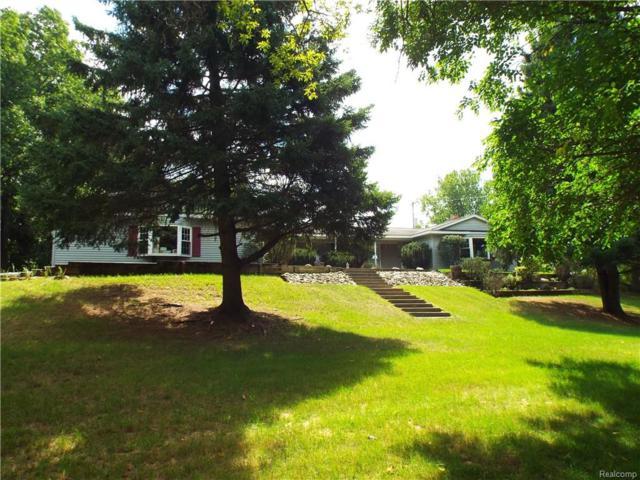 2520 Hummer Lake Road, Brandon Twp, MI 48462 (#218085674) :: Duneske Real Estate Advisors
