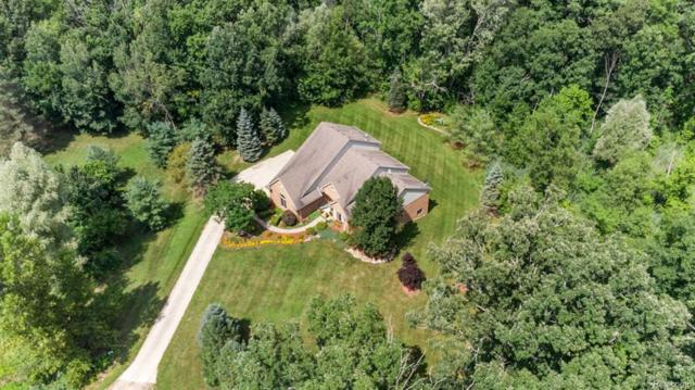 525 Lena Hill Drive, Addison Twp, MI 48367 (#218086430) :: The Buckley Jolley Real Estate Team