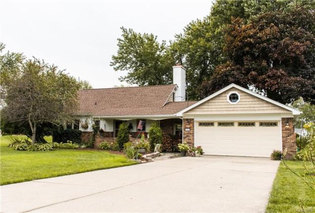 29808 Bayview Drive, Gibraltar, MI 48173 (MLS #218087479) :: The Toth Team